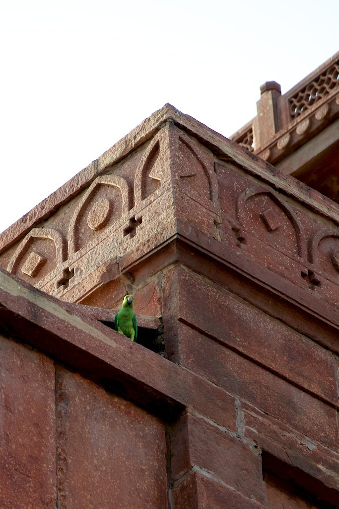 Fathepur Sikri VII