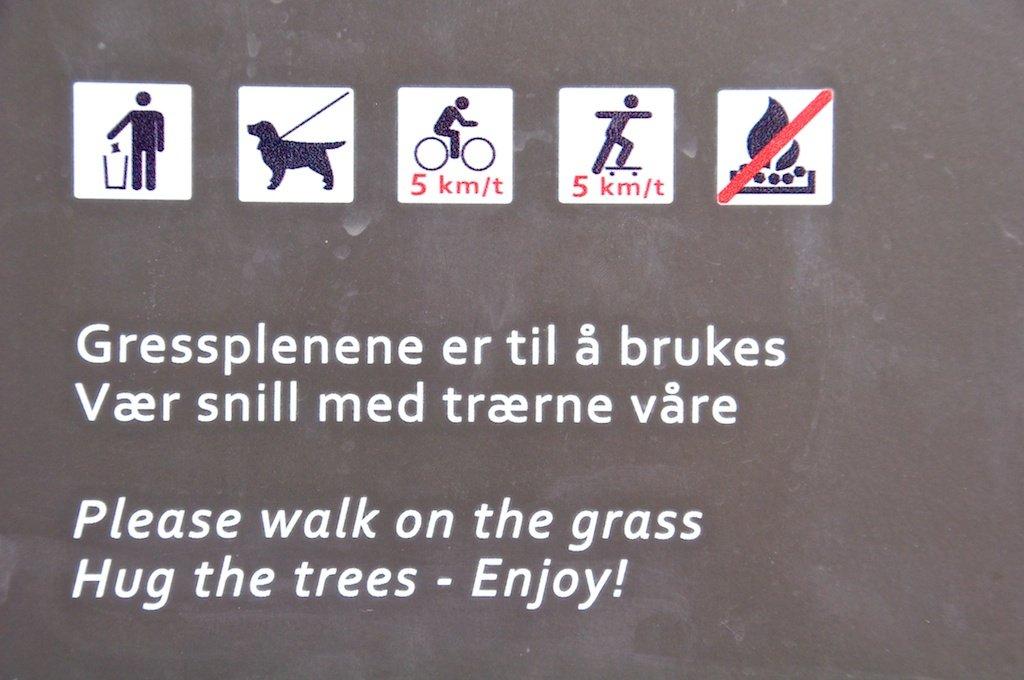 Hug the Trees - Enjoy!