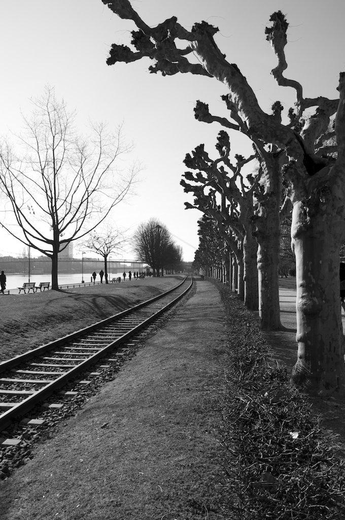 Rails at Main I