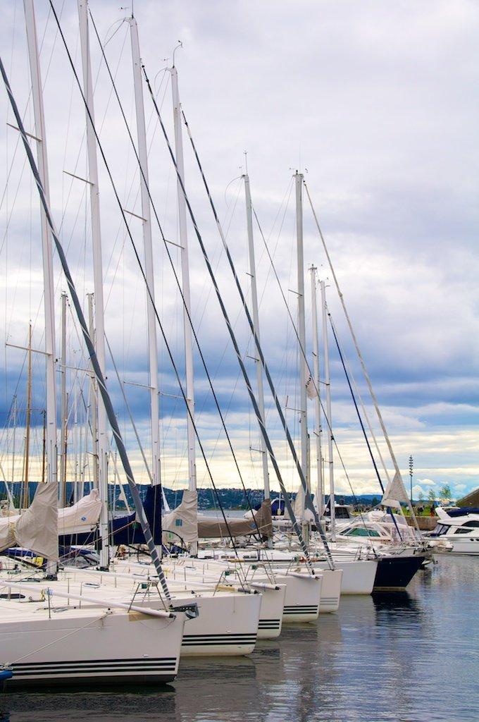 Sailing Harbour