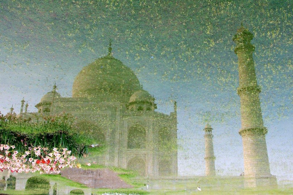 The Hanging Flowers at Taj Mahal